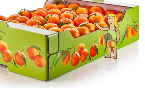Fruit Stays Fresh For Longer in Corrugated Trays
