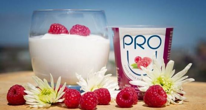 New Irish Health & Wellness Company Launches Yogurt For Bones and Muscles