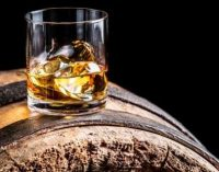 Craft Spirits Account For One in Seven Global Spirit Launches