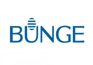 Bunge-300x209