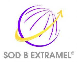 Logo Extramel HD