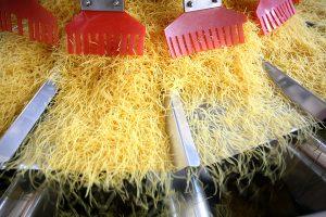 ish2016.036 Recheis pasta, CCW showing radial feeders handling vermicelli (PR shot) 3397