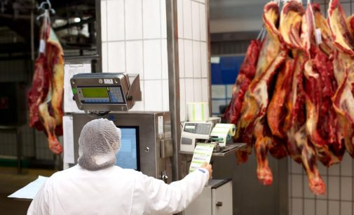 Road Map to the Smart Meat Factory