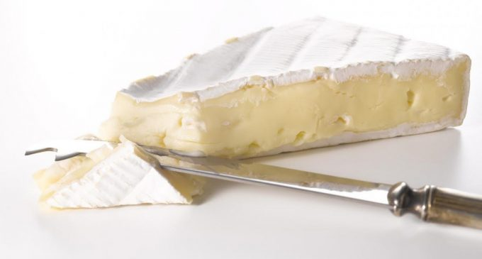 DuPont Nutrition & Health Launches New Cheese Cultures