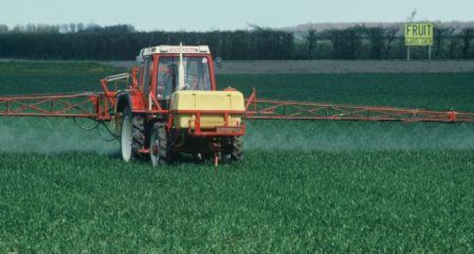 Risk to Consumers of Pesticide Residues in Food Remains Low
