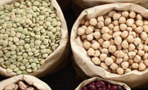 Public Consultation – Dietary Reference Values For Thiamin (Vitamin B1)