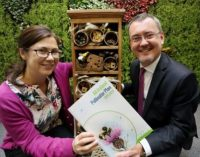 Irish Businesses Urged to Help Save the Bees!