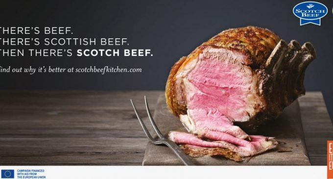 Report Highlights Economic Importance of Scottish Red Meat Industry