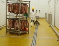 Hygienic Drainage Design Within the Meat Processing Industry