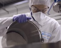 How to Achieve the Best Results From Key Ingredients Using Silverson Mixers