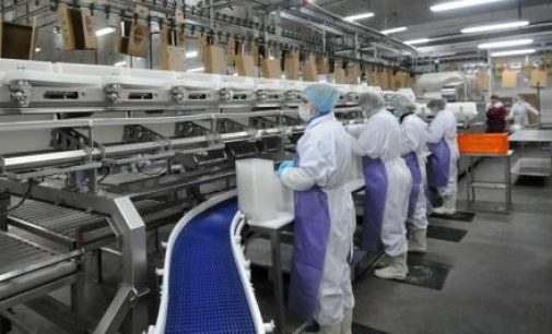 Cherkizovo Group Plans Poultry and Pork Expansion in Russia