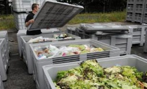 European Commission Adopts Common Methodology to Measure Food Waste Across the EU