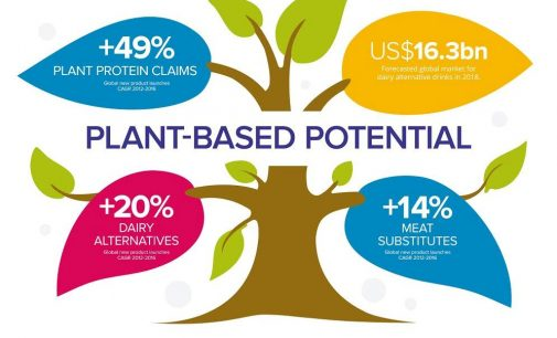 Global Plant Milk Market to Top US$16 Billion in 2018