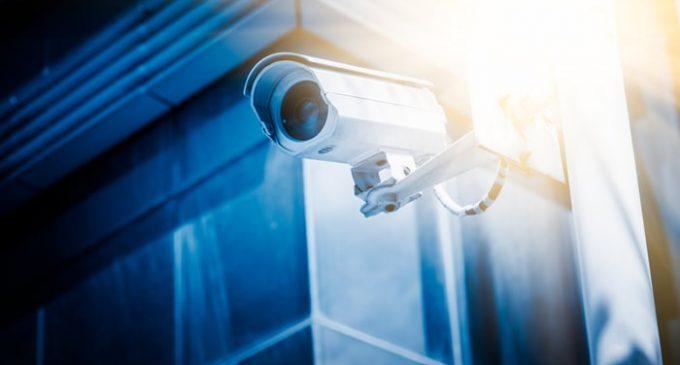 Mandatory CCTV in All Slaughterhouses Under New Animal Welfare Plans