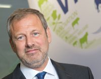 Vion to Take Over Otto Nocker and Six Meat Markets in Germany