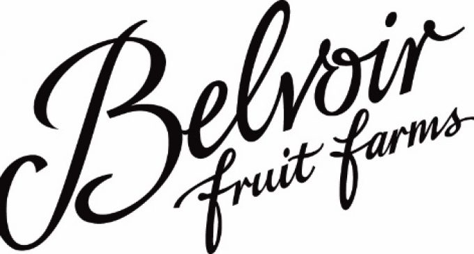 Belvoir's Bubbling With Joy This Christmas