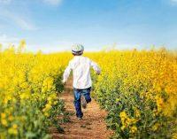 Bayn Europe Enters China Sugar Reduction Market