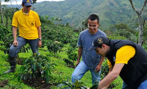 Nespresso to Invest in Post-conflict Colombian Coffee