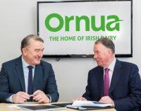 Ornua Appoints Chief Executive Designate