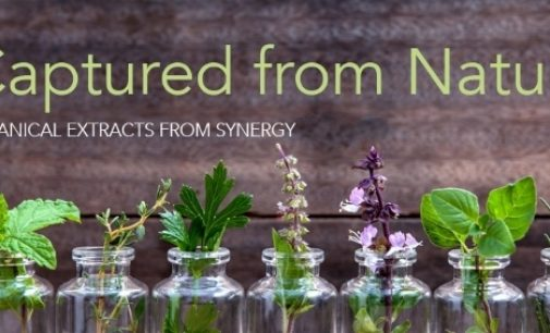 Synergy Flavours Launches 'Captured From Nature' Botanical Extracts Range