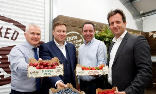 Center Parcs Serves Up €5.2 Million in Contracts to Irish Food Companies