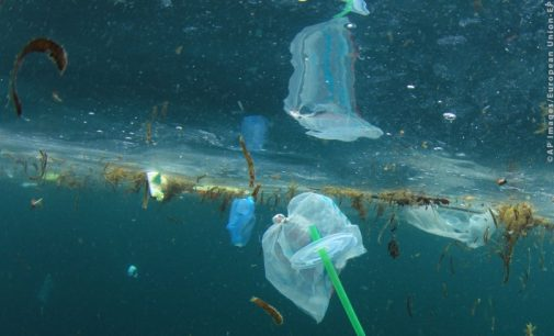 EU Ban on Throwaway Plastics By 2021