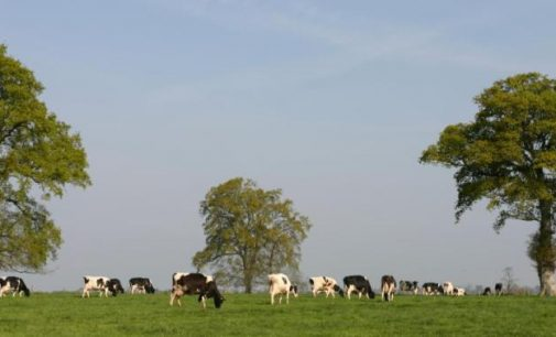 Agrial Continues Strategic Expansion With German Dairy Acquisition