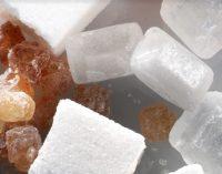 Nordzucker to Invest €100 Million in Swedish Sugar Production