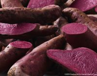 Introducing the Hansen Sweet Potato™ – The Secret Behind the Market's Best Carmine Alternative