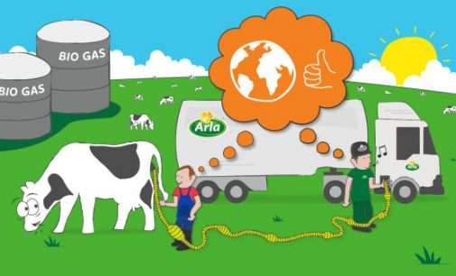 Powering Trucks With Cow Manure