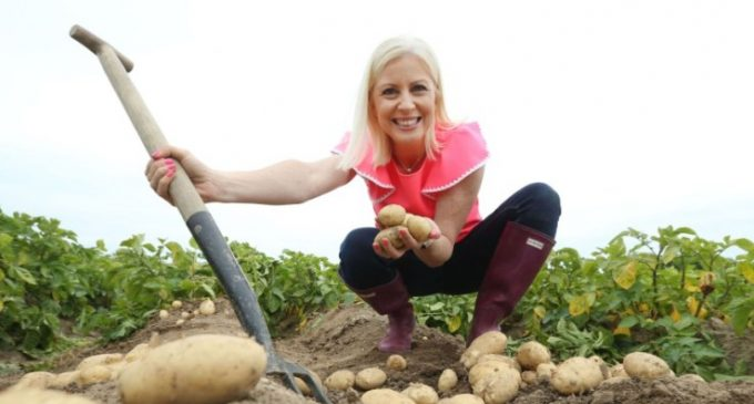 "Bord Bia Drive to Make Potatoes More ""Insta-friendly"" With the Millennial Consumer"
