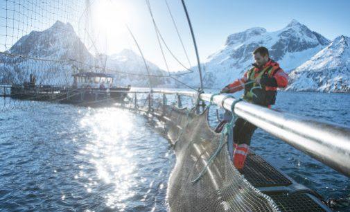 Norwegian Seafood Exports Top NOK107 Billion in 2019