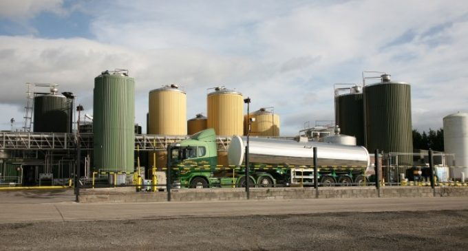 Meadow Foods Expands its Ingredients Portfolio