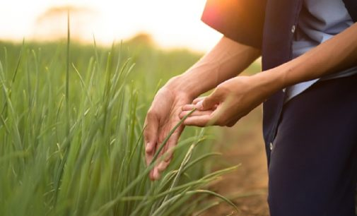 CONSUS Adds Iteris ClearAg Environmental Intelligence to Crop Research and Development Platform
