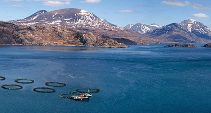 Bakkafrost to Acquire Majority Stake in The Scottish Salmon Company