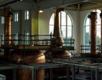 Global Growth in Irish Whiskey Leading to Increased Demand For Irish Barley and Malt