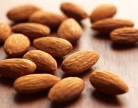 Almonds Remain the Most Popular Nut in New Product Introductions Across Europe