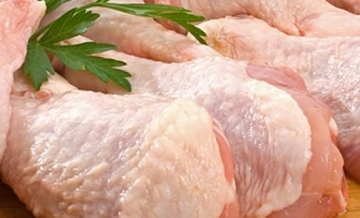 Industry-wide Review Launched into Meat Processing Plants Across the UK