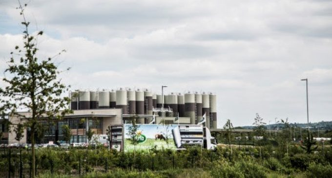 Arla Foods Warns of 'Dairy Dilemma' of Impossible Choices Post-Brexit