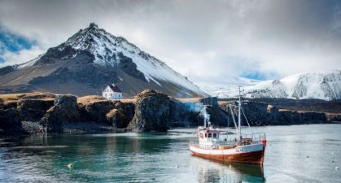 Icelandic Group to Sell Seachill