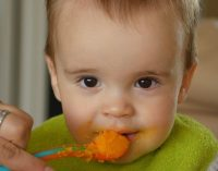 WHO/Europe Studies Find Baby Foods are High in Sugar and Inappropriately Marketed For Babies