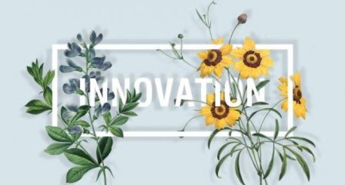 Innovators of Natural Flavour Launch New SigNATURE® Range