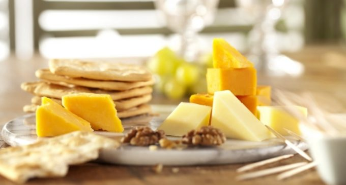 DSM Introduces DelvoADD Portfolio of Adjuncts For Aged Cheddar Cheese