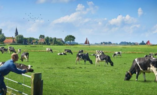 FrieslandCampina Plans to Build a Sustainable Dairy Processing Plant