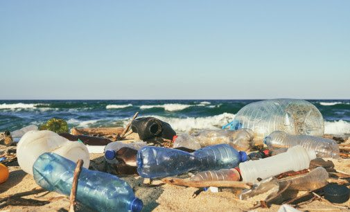 Widespread Support For Plastic Packaging Tax