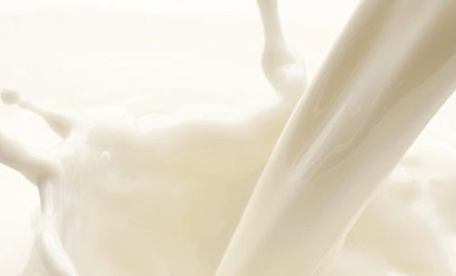 U.S. Dairy Exports Volume Sets All-time High Mark in 2020