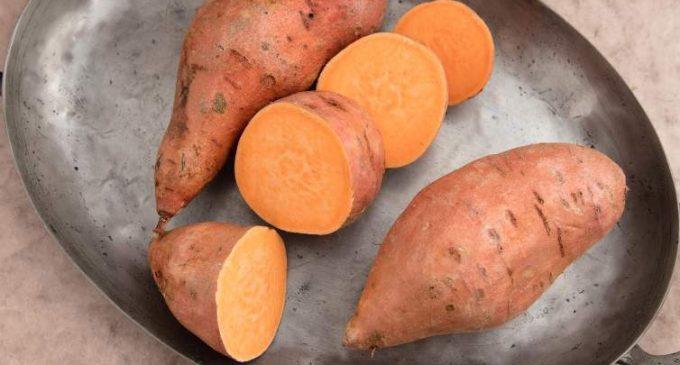 Global Food Companies are Increasingly Sweet on Sweet Potatoes