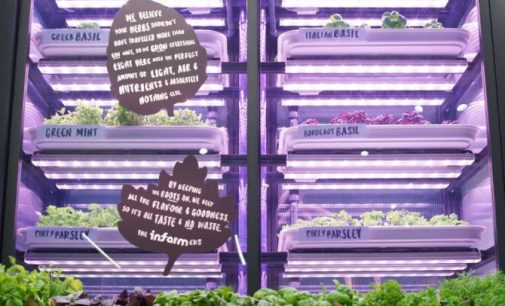Marks & Spencer Partners Infarm to Bring Urban Farming to London Stores