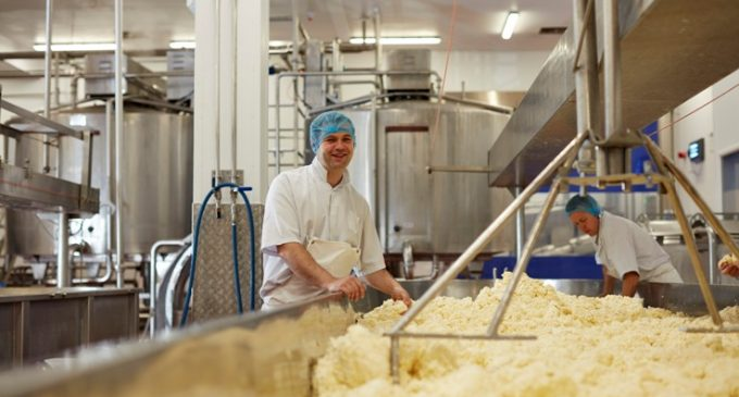 Wensleydale to Increase Cheese Production With £17.9 Million HSBC UK Support