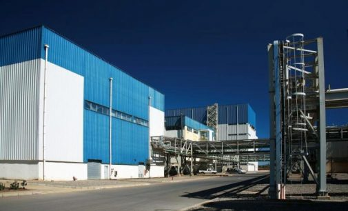 BENEO to Invest More than €50 Million Expanding Chicory Inulin Production
